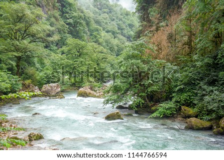mountain river with a strong current in the mountains