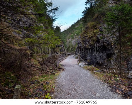 Mountain river with footpaths along the trail in the autumn landscape #751049965