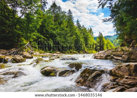 Mountain river with rapid streams of water, trees on the bank of a mountain river.