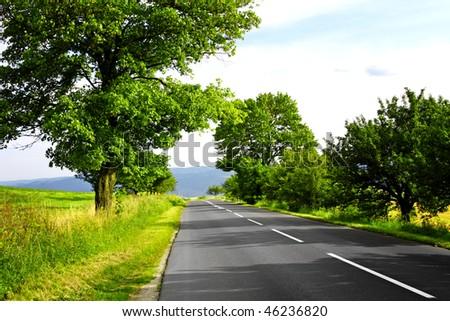 Mountain road #46236820