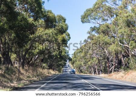 mountain road in Australia #796256566
