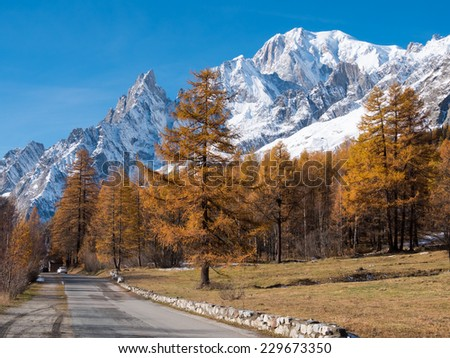Mountain road in fall. In background larch trees and the snowy peaks of Mont Blanc - Courmayer, Val d\'Aosta, Italy, Europe.