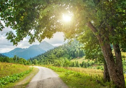 Mountain road. Landscape with rocks, sunlight through a tree and an asphalt road in the summer. Background travel.