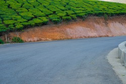 Mountain roads of Munnar with tea estates on both sides provides a breathtaking view to the tourists.