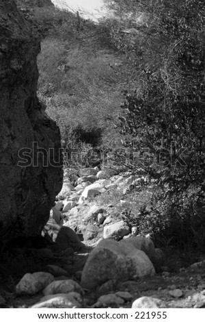 mountain, rocks close-up\\ black and white