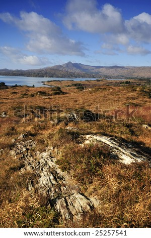 mountain scene overlooking Bantry Bay, Co.Cork, Ireland
