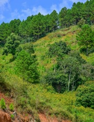 Mountain scenery of Dalat, Vietnam. Dalat is a resort city famous for its cool air and many beautiful natural scenes.