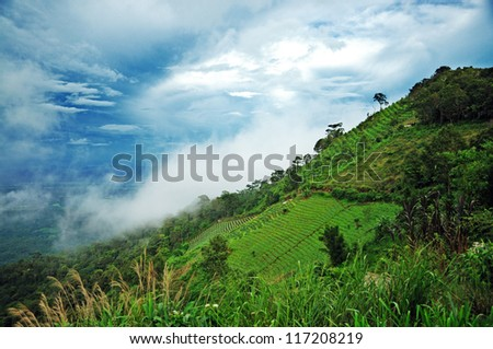 mountain slope under blue sky , Thailand