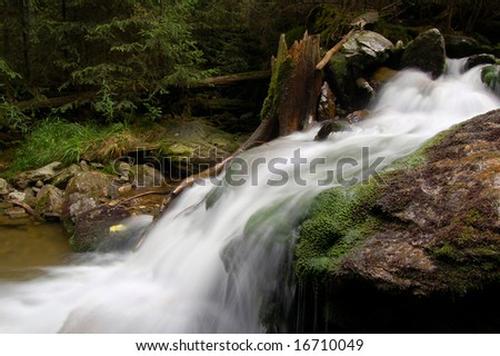mountain spring in bohemian forest #16710049