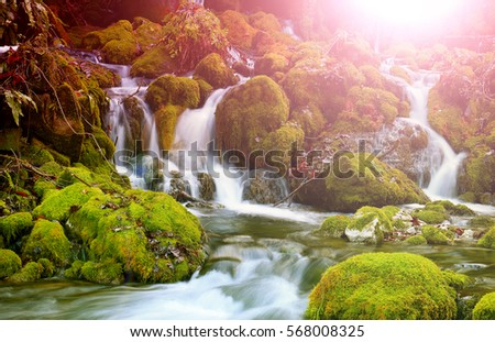 Mountain stream among the mossy stones #568008325