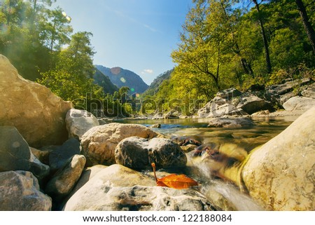 Mountain stream and sunrays