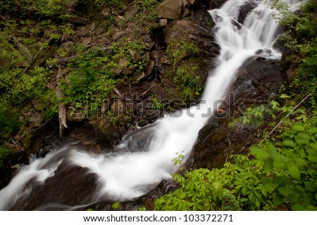 Mountain stream cascading down rocks, with bushes on the banks, at Amicalola Falls in Northern Georgia, USA