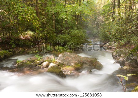Mountain stream in Great Smoky Mountains national park