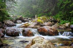 Mountain stream in High Tatras National Park, Slovakia