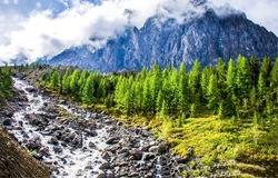 Mountain stream in the middle of the rocks. Mountain stream view. Clouds in mountains. Mountain river stream flow