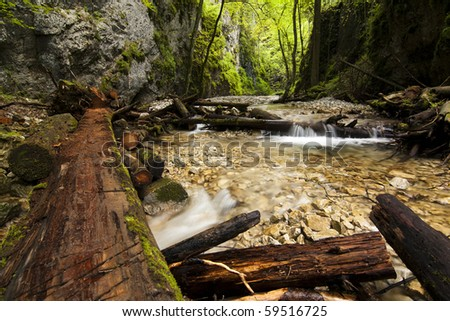 Mountain stream with ladder in canyon