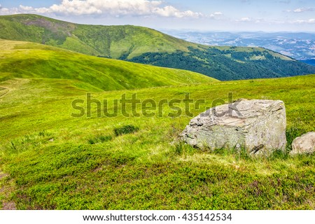 mountain summer landscape. meadow with huge stone among the grass on top #435142534
