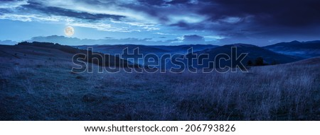 mountain summer landscape.trees near meadow on hillside under  sky with clouds at night in full moon light
