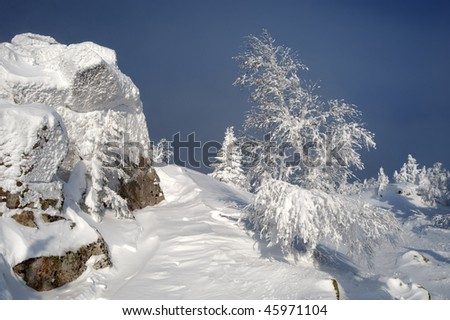 Mountain summit with a small fir tree in winter at Urals, Russia