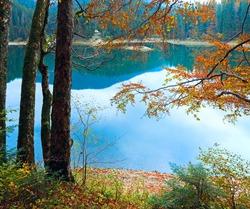 Mountain Synevir lake view through autumn tree twigs