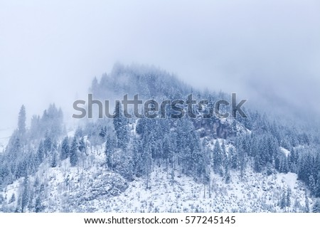 mountain top in winter covered with fog, Alps #577245145