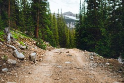 Mountain trail for four wheeling. Colorado mountains and the pine trees. Off road landscape. Dirt trail for off roading in Colorado.