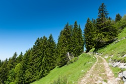 Mountain trail in Alps under blue sky. Chamonix valley, France.