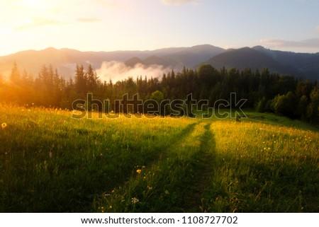 Mountain valley during sunrise. Amazing nature scene glowing by sunlight. Located place: Carpathians, Ukraine, Europe #1108727702