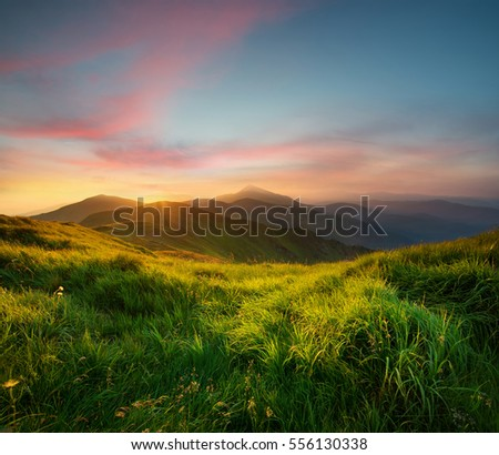 Mountain valley during sunrise. Natural summer landscape #556130338