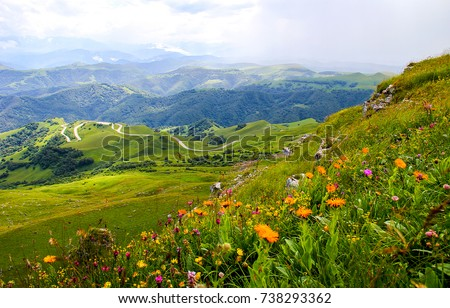 Mountain valley flowers landscape #738293362
