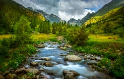 Mountain valley river creek landscape. Mountain green valley view. Mountain creek water flow. Mountain green valley water view
