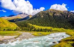 Mountain valley river stream landscape. Mountain river valley view. Beautiful mountain river valley. River valley in mountains
