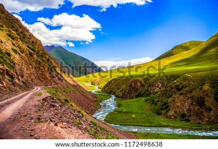 Mountain valley river stream landscape. Summer green mountain hill valley stream panorama. Mountain stream in mountain green valley view #1172498638