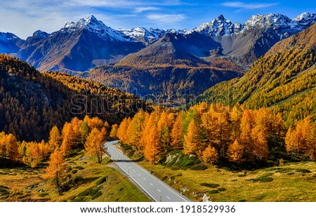Mountain valley road in autumn landscape. Autumn mountain road landscape. Road in autumn mountains. Mountain road in autumn fall