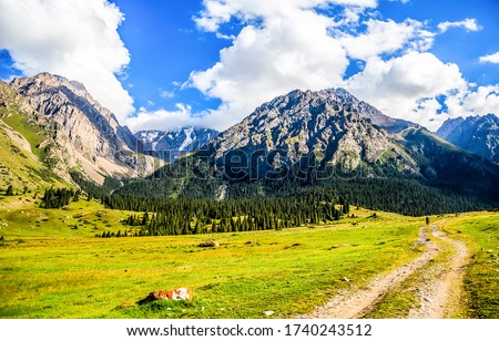 Mountain valley road landscape. Mountain valley view. Mountain green valley landscape. Valley in mountains