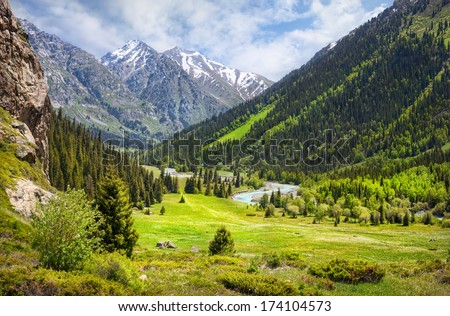 Mountain valley with green trees and river in Dzungarian Alatau, Kazakhstan, Central Asia #174104573