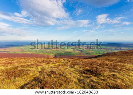 Landscapes & Skylines