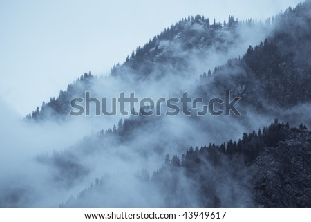 mountain view with haze and forest -black and white