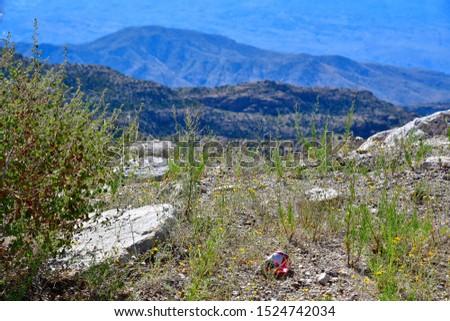 Mountain vista on the Mt Lemmon Scenic Byway just outside Tucson, Arizona. #1524742034
