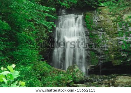 Mountain waterfall #13652113