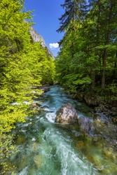 Mountain wild river landscape. River valley in mountains. Wild mountain river panorama. Small waterfall in forest stream. Long exposure. Fast water stream in mountain river with coniferous forest