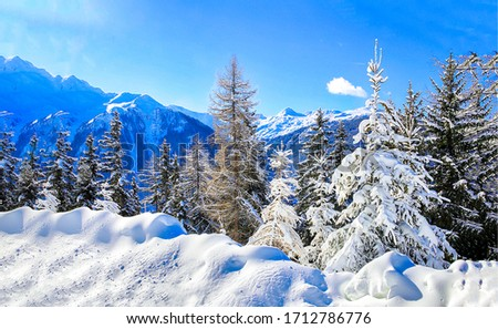 Mountain winter snow covered fir trees view. Winter mountain forest snow. Forest snow in winter mountains. Mountain winter snow forest trees view