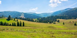 mountainous countryside at high noon. beautiful rural scenery with trees and fields on the rolling hills at the foot of the ridge. nature and sustainability development concept