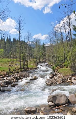 Mountainous landscape and mountainous river.Carpathian.