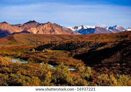 mountainous landscape in Denali nationalpark