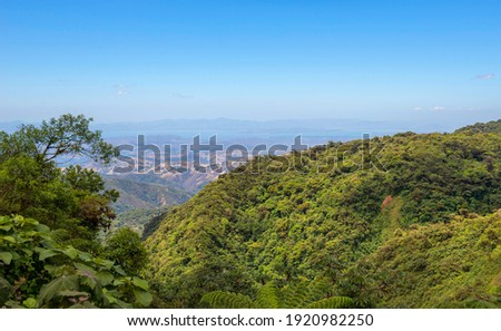 Mountainous Nature in Santa Elena Cloud Forest Reserve, in Monteverde, Costa Rica. Foggy rainforest in the mountains. Central America.  Stok fotoğraf ©