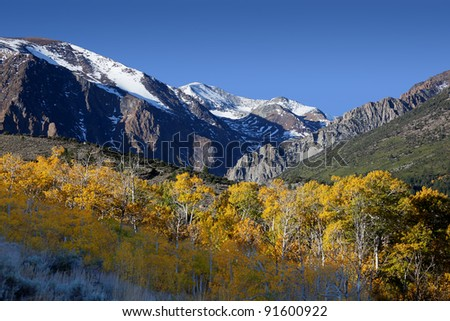 Mountains and aspens, Fall, Eastern Sierra Nevada, California