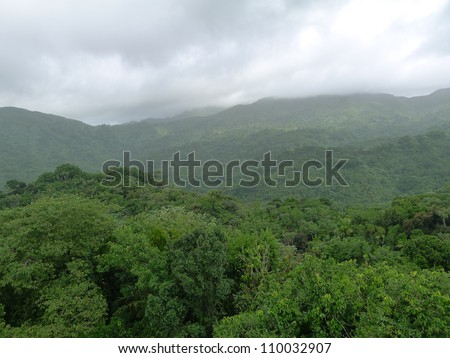 Mountains and dense lush tropical rain forest in El Yunque Tropical rain forest Puerto Rico Antilles - stock photo