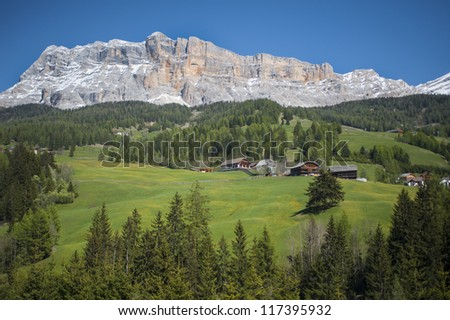 Mountains and meadows, Tyrol region of Italy