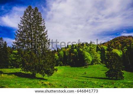 Mountains beautiful landscape #646841773